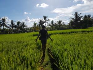 Singles Retreat Bali Nomad Soulmates